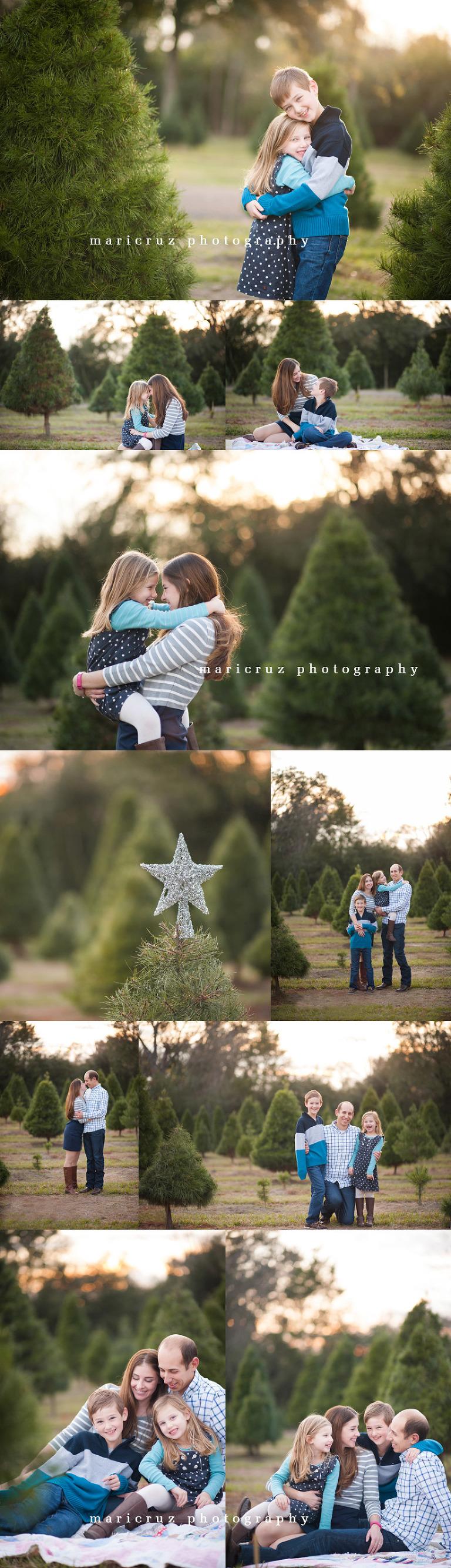 Tree Farm The Woodlands TX Family Photographer